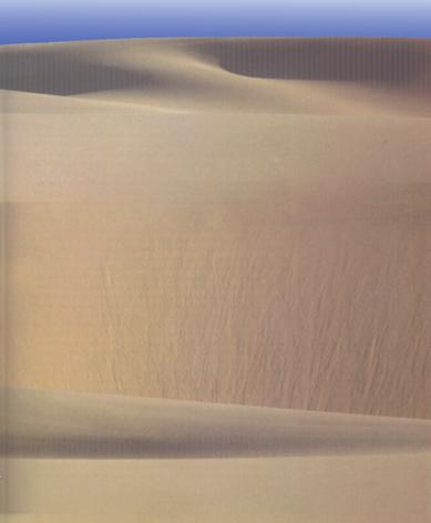 Silence of the Desert